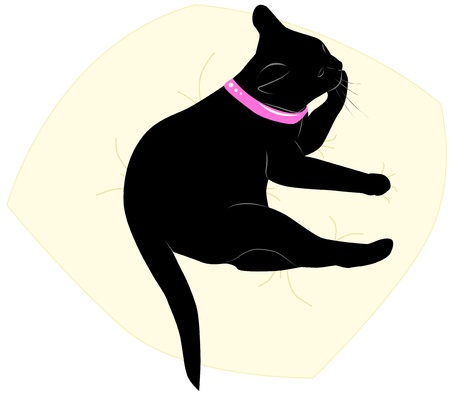 The vector illustration, black cat licks a paw on a pillow Vector
