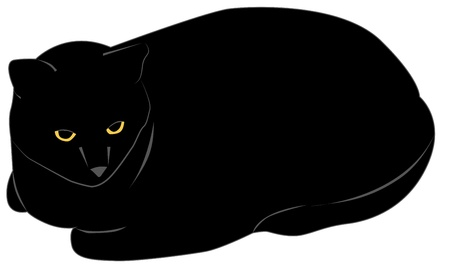 Vector illustration, simple drawing big black cat Vector