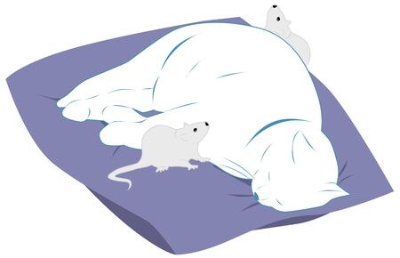 lazybones: fat white cat sleeps on a pillow mouse running around