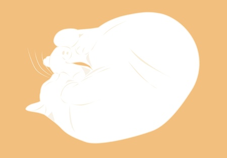 thick: Thick white cat sleeps curled up Illustration