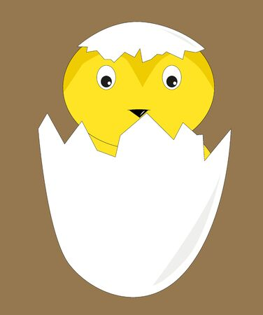 hatched: yellow chick hatched from eggs, vector illustration