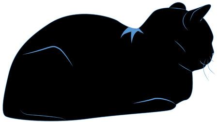 resting black cat with blue contour Illustration