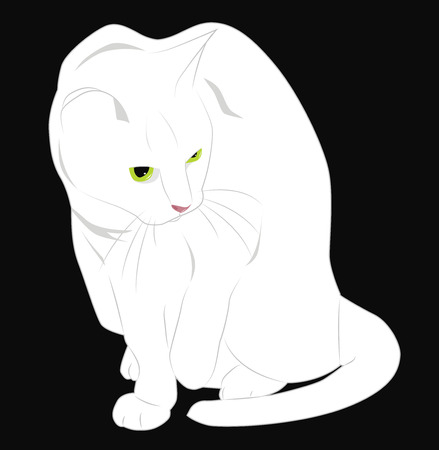 watchful: afraid, ready to escape white cat Illustration