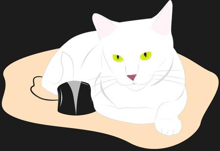lies: White cat lies next to a black computer mouse