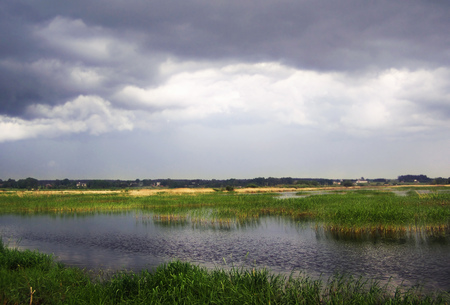 Dark storm clouds over the lake overgrown with reeds