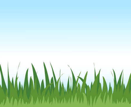 Bright background with green grass and blue sky Illustration