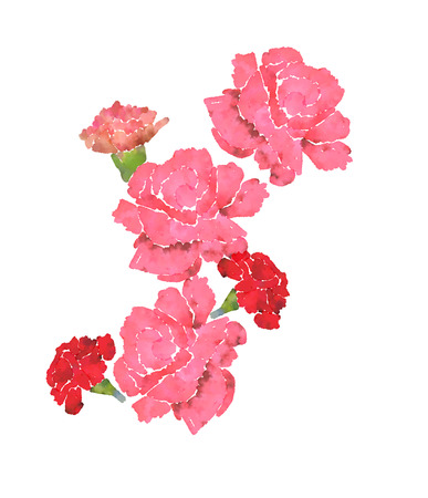 Bouquet of pink carnations, imitation watercolor drawing Imagens