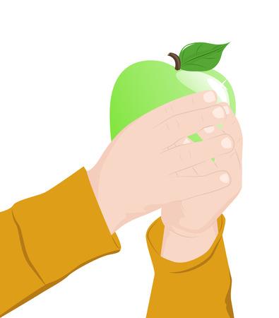 carefully: Childs hands carefully hold big green apple, vector illustration