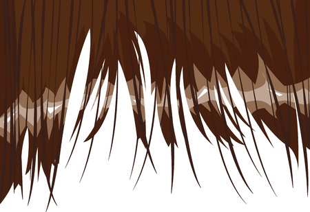edges: Fringe of brown hair with ragged edges