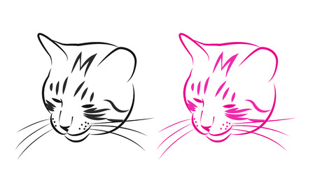 sly: Muzzle sly cat, black and pink sketch. Vector illustration