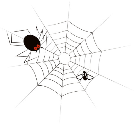 victim: Fly tangled in the web. A huge spider-monster is approaching the victim. Vector illustration Illustration