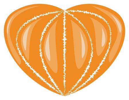 mandarin: Mandarin without skin in the form of heart. Vector illustration Illustration