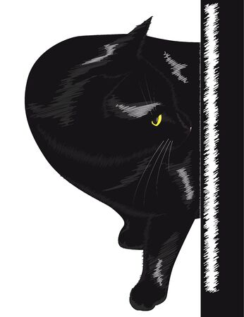 curious: Beautiful black cat with yellow eyes peeking from the corner. Vector illustration