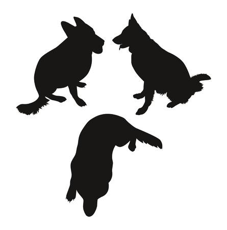 german shepherd: Three simple silhouette of a German Shepherd. illustration