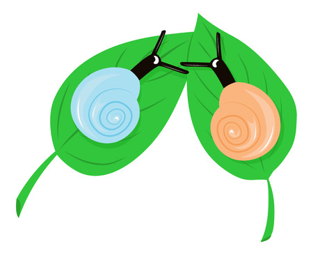 frienship: Two snails have met on the leaves. illustration
