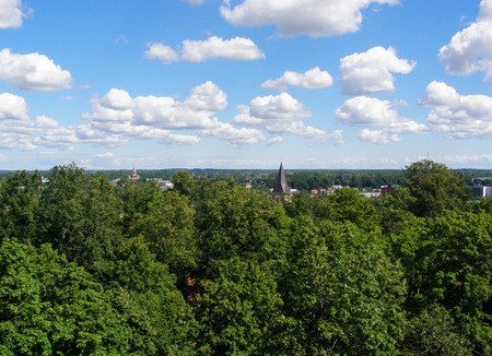 Landscape. Blue sky and the city behind trees on the horizon Stock Photo