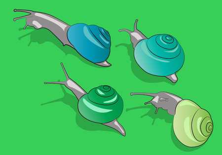 Four cartoon snail crawling on the grass. Vector illustration Illustration
