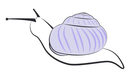 The contours of a snail with a purple shell. Simple  illustration.