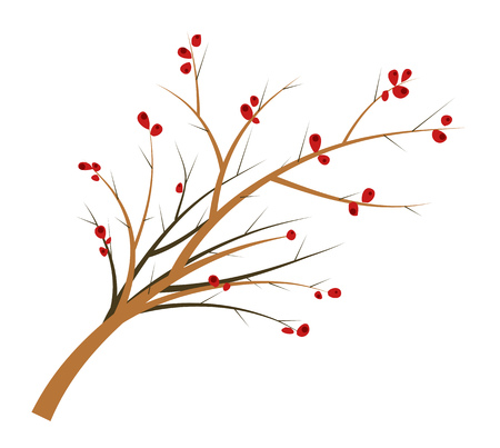 Branch of a hawthorn with berries and thorns. Flat vector illustration
