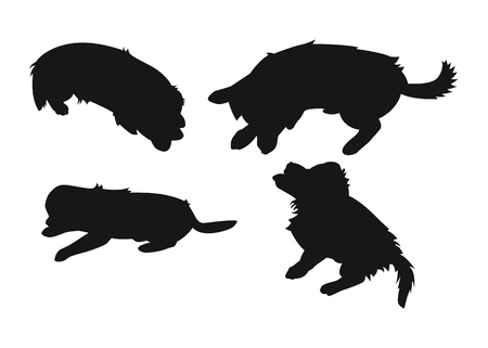 Set of silhouettes of a small puppy. Vector illustration