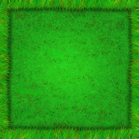 Square green background of grass with frame