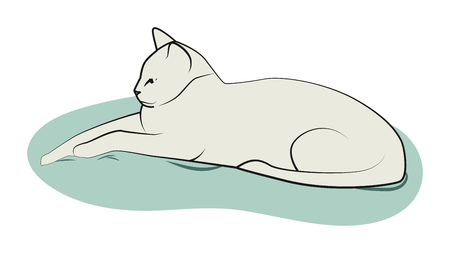 Big serious cat lies on the pillow. Vector illustration.