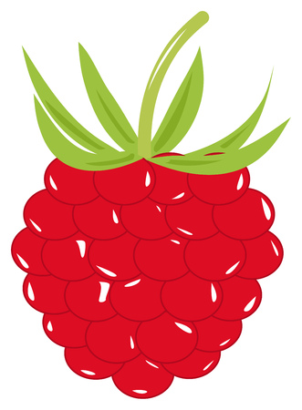Large ripe red raspberry with green leaves. Vector illustration