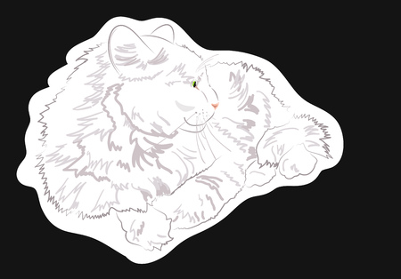 White cat lies and looks away. Vector illustration
