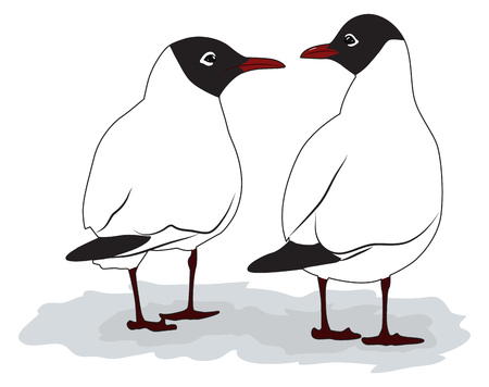 Two seagulls turned its back and look at each other. Vector illustration Ilustração