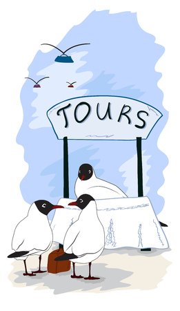 Black headed gulls choose for a trip and choose tour. Vector illustration Ilustração