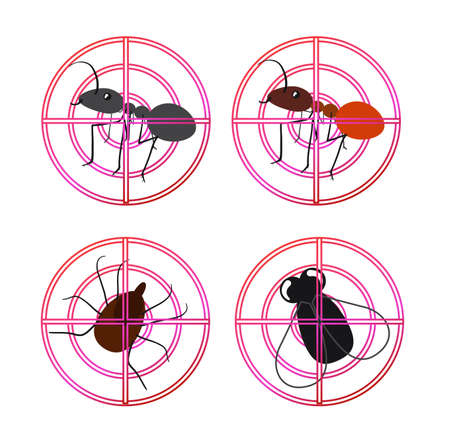 Set of icons with insects. Conceptual image pest control. Vector illustration