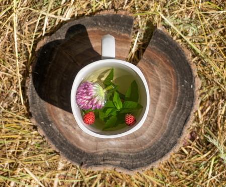 Tea with mint and wild strawberries in a white cup on the hay