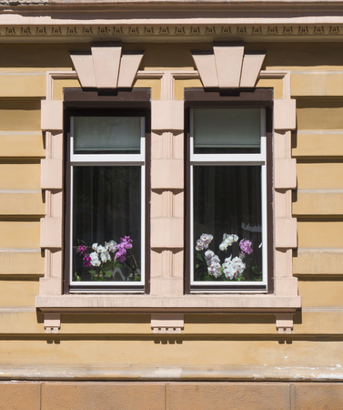 orchid house: Two old beautiful windows on a stone wall in Chernivtsi, Ukraine. Behind the glass multi-colored orchids can be seen Stock Photo