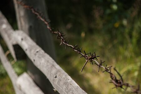 cattle wire wire: Barbed wire stretched along the wooden fence Stock Photo