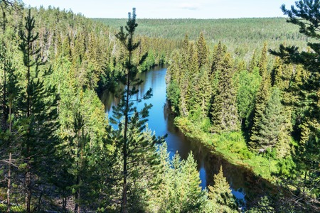 Green forest and blue river, Finland. Oulanka National Park 版權商用圖片