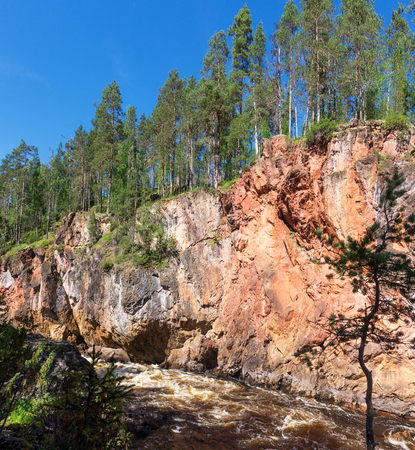 Forest on the cliffs above the stormy river, Finland. Oulanka National Park