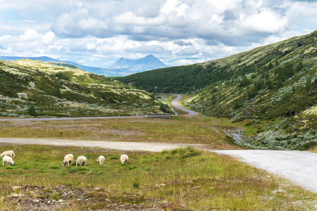 View of the Storsolnkletten mountain from the national tourist route Rondane, Norway Archivio Fotografico
