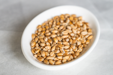 Wheat grains on a white plate. Close-up