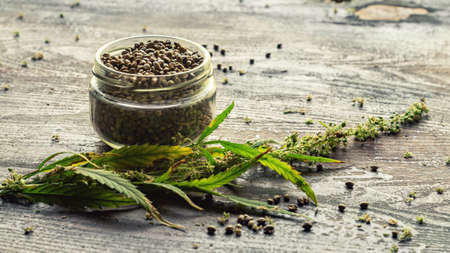 Cannabis plant and seeds in jar on wooden table Archivio Fotografico
