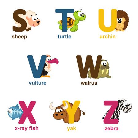 alphabet animaux: animaux de l'alphabet de S � Z - illustration vectorielle