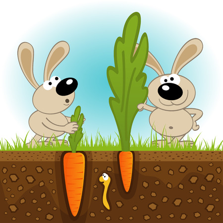 hares big and small carrots - vector illustration Illustration