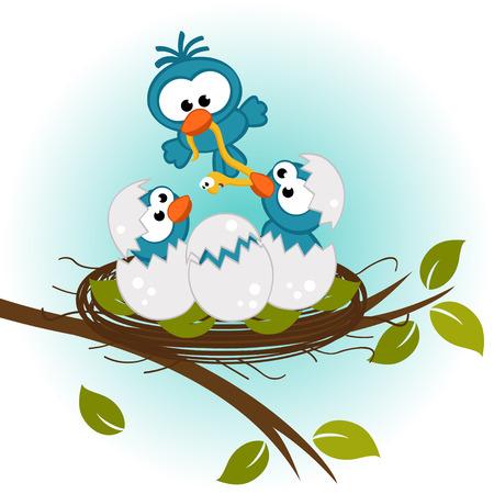 bird feeding babies in nest - vector illustration Иллюстрация