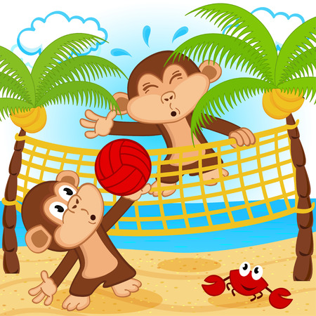 sunny beach: monkeys playing in beach volleyball - vector illustration