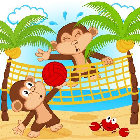 illustrazione sole: scimmie che giocano a beach volley - illustrazione vettoriale