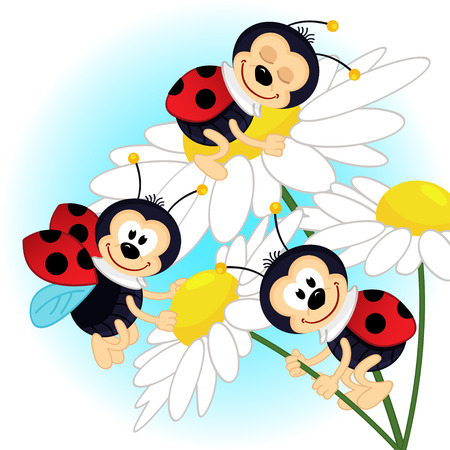 cartoon bug: ladybug on camomile - vector illustration