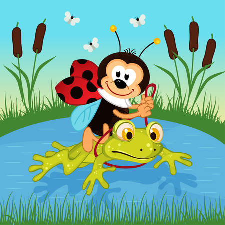 ladybug riding on frog  - vector illustration Vector