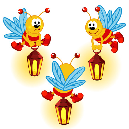 glowworm: glowworm with lantern  Illustration