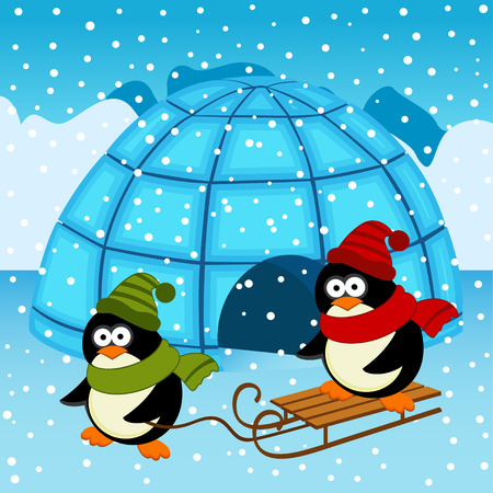 igloo: penguin igloo