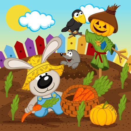 rabbit harvest vector - vector  illustration, eps
