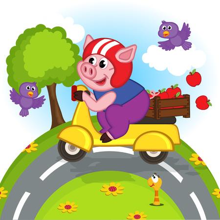 Schwein reitet auf einem Scooter- vector Illustration, Eps